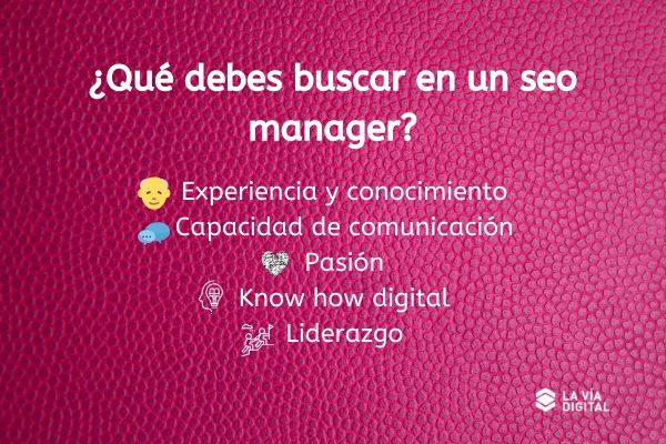 características seo manager
