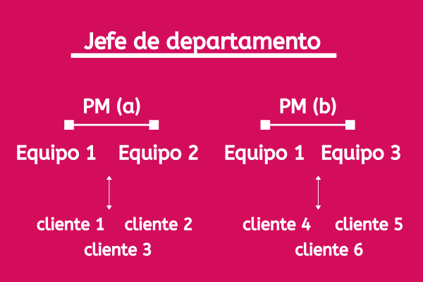 jerarquía project manager