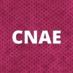 cnae EMPRESAS