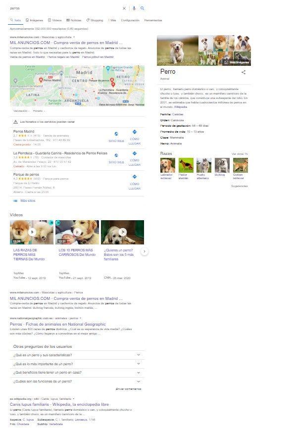 resultados de búsqueda perros
