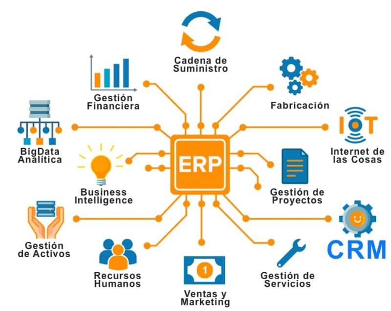 ERP características